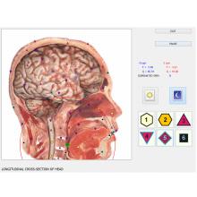 Vektor 8d nls lris bioresonance gesundheitscanner