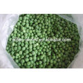 Chinese IQF frozen green pea