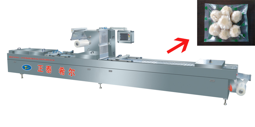 Vacuum Packaging Machine Food