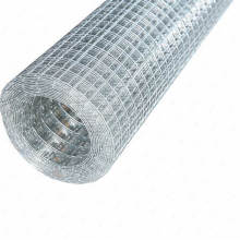 Welded Wire Mesh in Good Quality With ISO9001;TUV ;CE  Certification in Hot Sale(Factory Price)