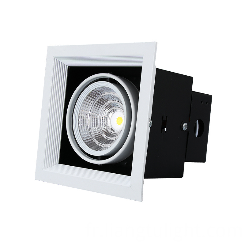 Single Head Fixture Downlight