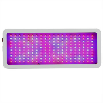 2000w High Power Grow Light para plantas de interior