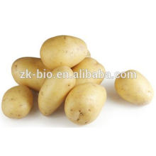 High Quality Potato Flakes Flour For Sale