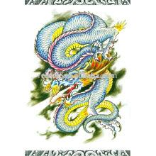 Chinesische Drachen Tattoo Zeichnung Buch