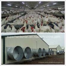 Casa da exploração avícola da estrutura de aço com equipamento de cultivo
