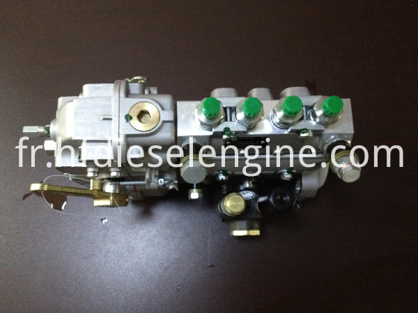 deutz fuel injection pump (4)