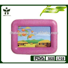 Quadro da foto da FIBRA do BAMBU Eco-friendly