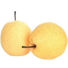 Top Quality Sweet Fresh Chinese Golden Yellow Ya Pear