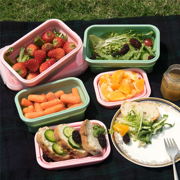 folding lunch box (17)