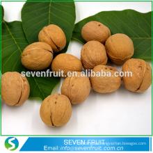 China por atacado exportação barata nogueira de frutos secos com casca