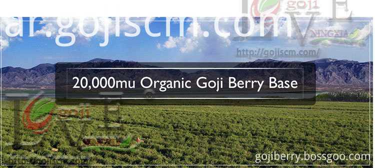Organic Goji Berries base