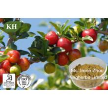 Vitamina C 17%, 25% Extracto de Cereza Acerola