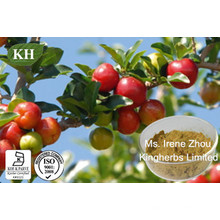 Vitamina C 17%, Extracto de Acerola Cereja 25%