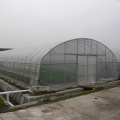 Single Span Tunnel Film Greenhouse