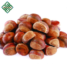 Rohe frische Kastanie Shandongs vom Porzellan