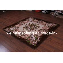 Visón de Raschel decoración alfombra de Picnic (NMQ-CPT012)
