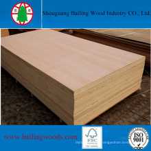 Hot Sale Commercial Plywood for Decoration or Furniture