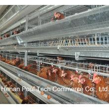 Hochwertiges Material Stahl Schicht Huhn Käfig System