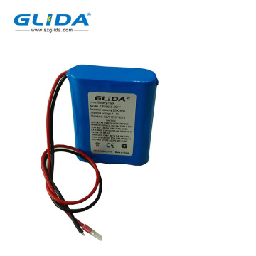 Usine 18650 Lithium Ion 7.4V 4400Mah Batterie