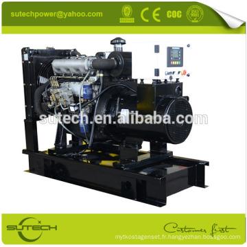 Prix diesel silencieux de générateur de 50kw, générateurs diesel, générateur diesel de yangdong