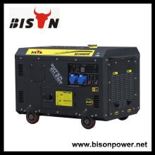 Bison China Zhejiang alta calidad fiable Firman generador diesel silencioso generador 12 KVA monofásico