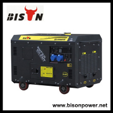 Bison China Zhejiang alta qualidade confiável Firman gerador silencioso do gerador diesel 12 KVA monofásico
