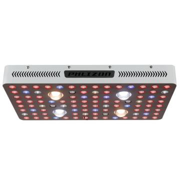 2020 Nuevo COB Cree Chips LED Grow Light