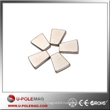 Professional Customized High Strength Trapezoid Neodymium Magnets