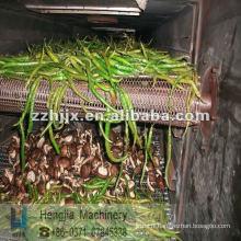 produits agricoles sèche-linge/sèche-linge machine/champignon sèche