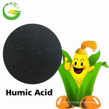 Humic Acid Fertilizer in China Market