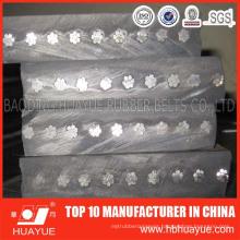 Manufaturer Sale High Quality Steel Cord Belt Conveyor 630-5400n/mm
