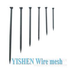 China competitive price coil Galvanized umbrella head roofing nail