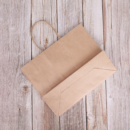 Kraft Paper Twist Handle Promotional Christmas Gift Bag