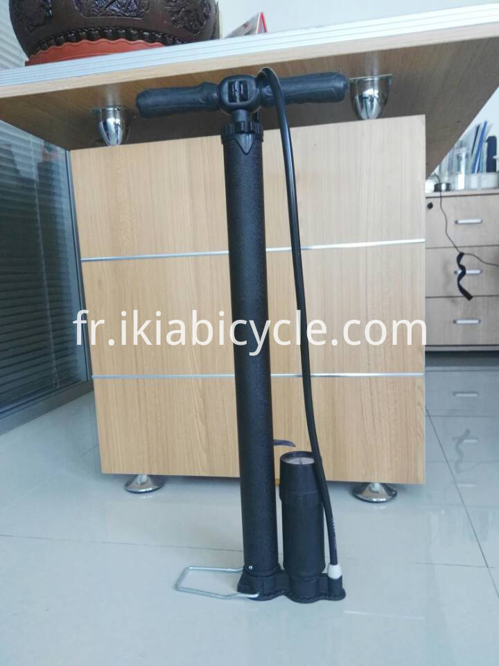 bike handle pump
