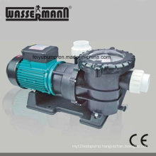 Single-Stage Swimming Pool Filter Water Pumps