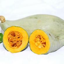 Thailand kernels white pumpkin seeds hybrid