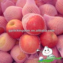 China nova safra vermelho fuji maçã Reino irmão