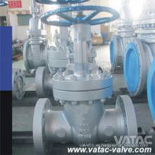 Vatac Wcb / Ss304 / Ss316cast Válvula de compuerta de acero con RF / Rtj