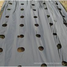 Земледелия PE перфорированная черный пластик Мульча пленка для Парника