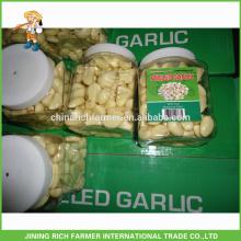 Export America Fresh Peeled Garlic