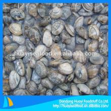Export de fruits de mer spécialisés spécialisés dans les fruits de mer congelés