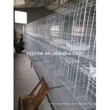 Cage galvanisée de pigeon de treillis soudé