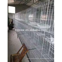 Galvanizado soldado Mesh Pigeon Cage