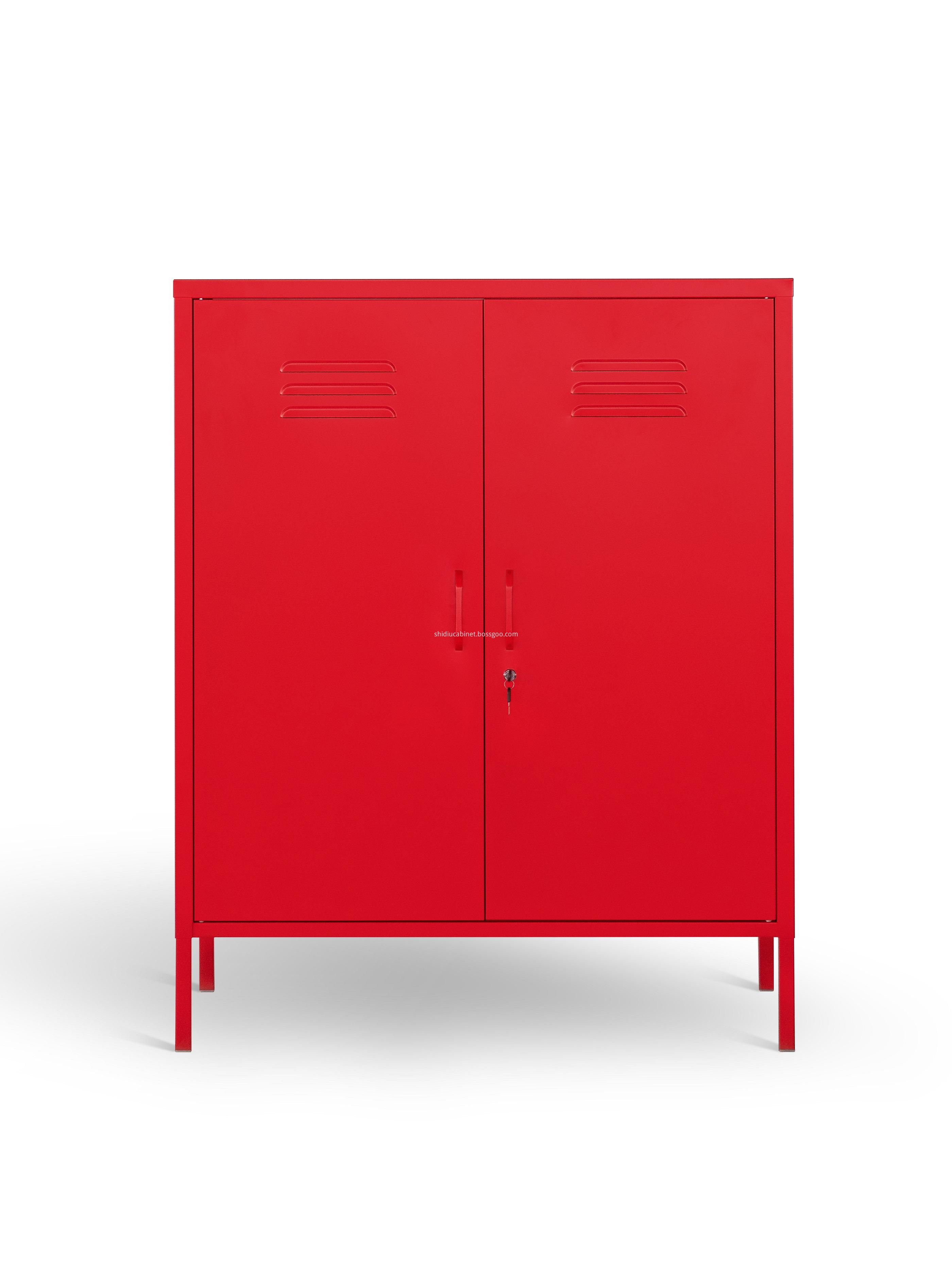 Swing Door Cabinet
