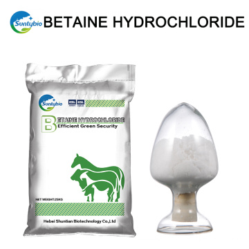 China Proveedores Alibaba Best Sellers Betaine Hcl