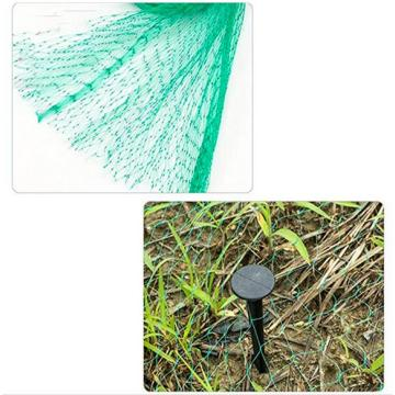 Diamond Garden Anti Bird Netting