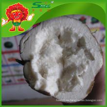 Proveedor de hortalizas congeladas precio barato para el mejor kudzu fresco chino