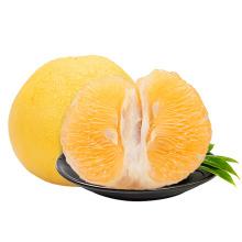 High Quality Chinese Juicy Red Bulk Fresh Grapefruit