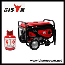 BISON(CHINA) Gasoline Biogas Double Use Biogas Power Generator