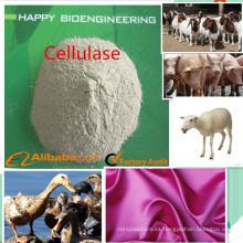 Aditivos alimentarios, Enzima de celulasa